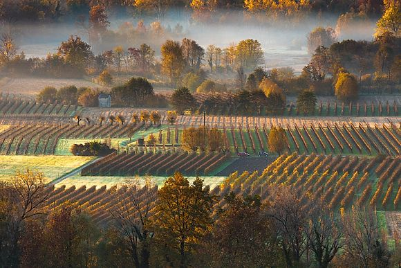 NEW IMAGES > The lands of Prosecco Unesco heritage hills and vineyards in the latest photos by Olimpio Fantuz