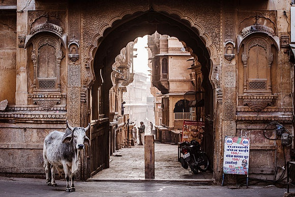 New Images > Photos of the month: September in India An extraordinary journey through India  with photos by Maurizio Rellini