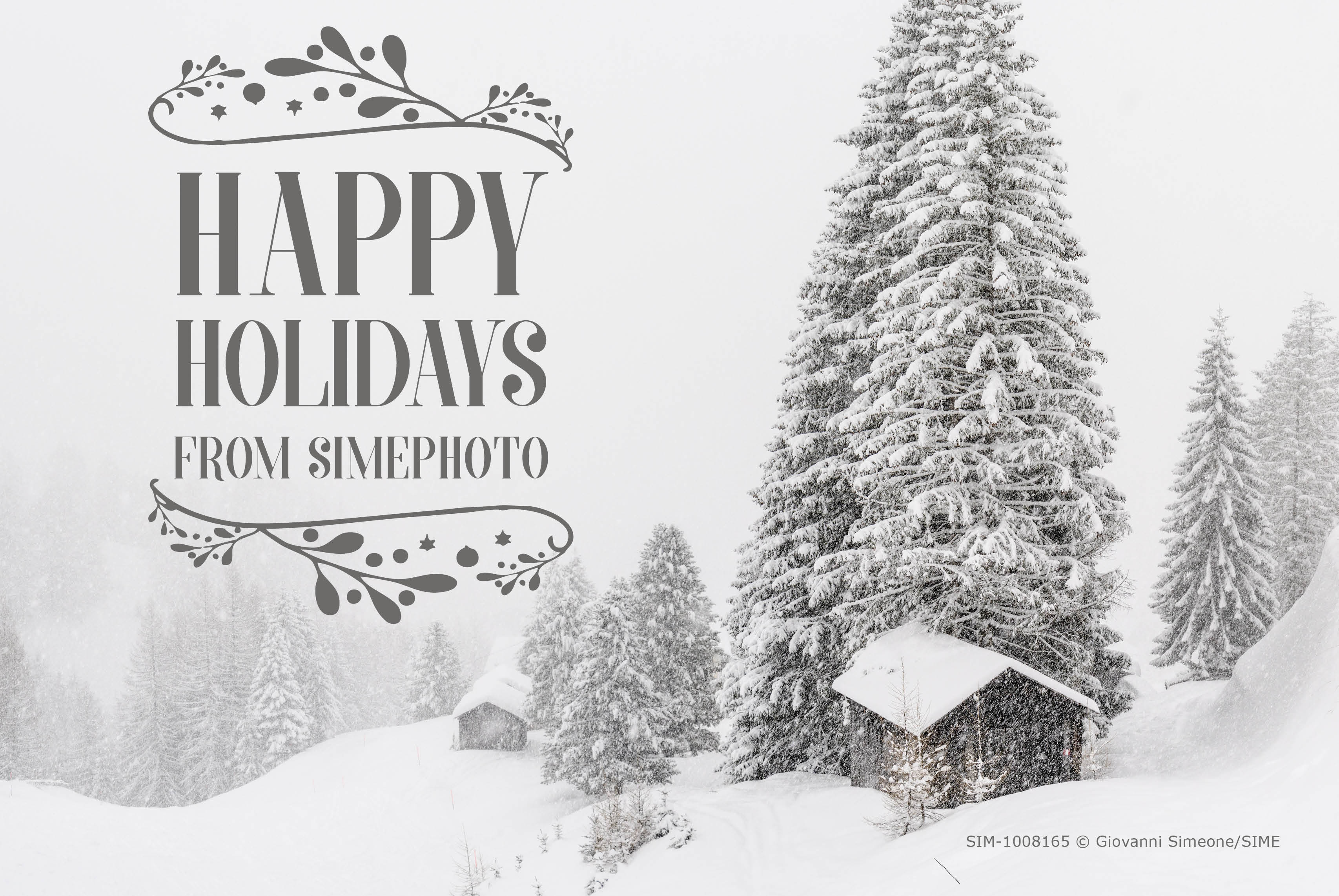 Simephoto wishes you all Happy Holidays !!! Our best wishes to all our customers, partners and contributors!