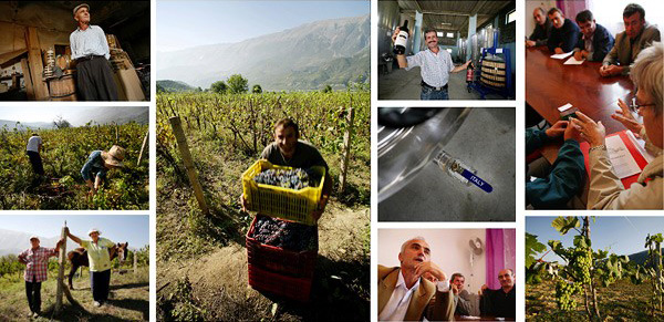 Solomango Travel Feature: Albania D.O.C. by Roberto Giussani International co-operation creates a small miracle as Italian winemaking expertise brings life back to the old vineyards of Albania